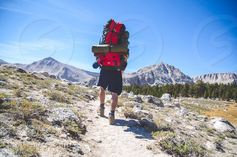 red and black mountaineering backpack photo