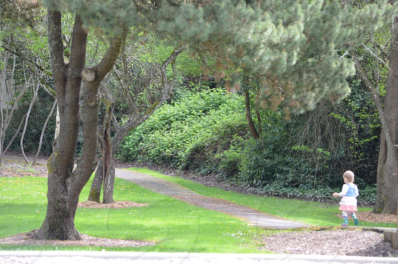 Toddler walking down tree covered path photo