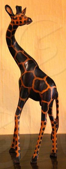 black and orange colored giraffe figurine photo