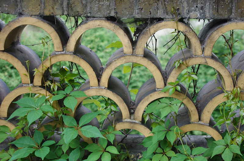 Living Patterns photo