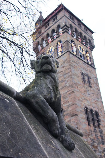 Cardiff Animal wall Panther Clocktower photo