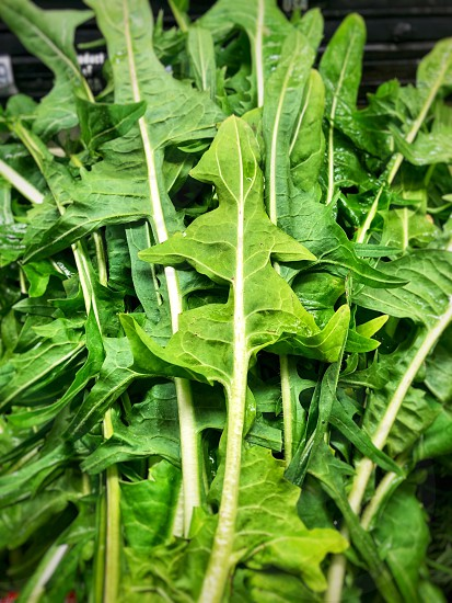 Health and Wellness Request Close Shot Arugula Salad Vegetarian Vegan Vegetables Salad Healthy Wellness photo