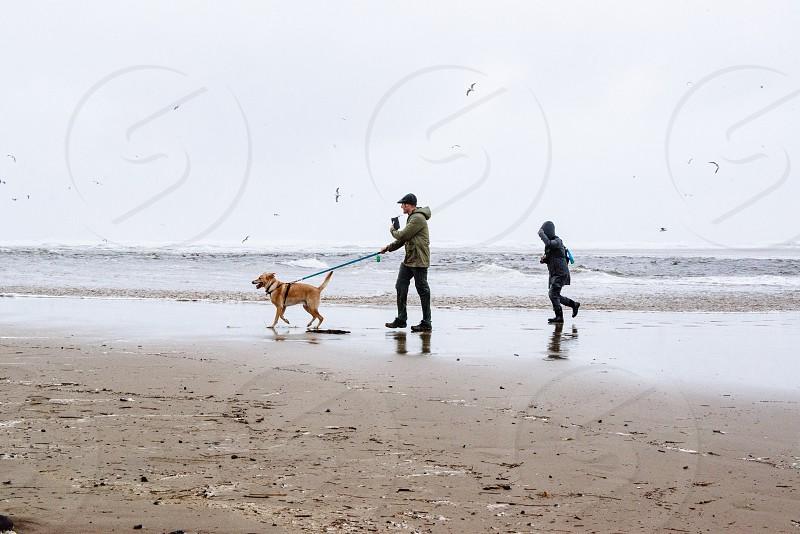 Walk on the beach photo