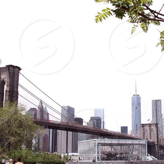 city hanging bridge photo