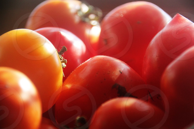 Close up photo of basket of tomatoes. photo