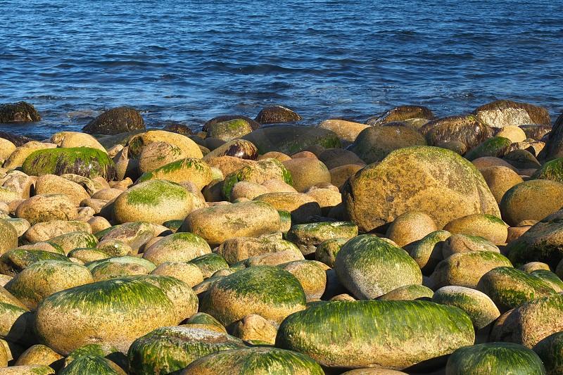 Round rocks and ocean. Warm light.  photo