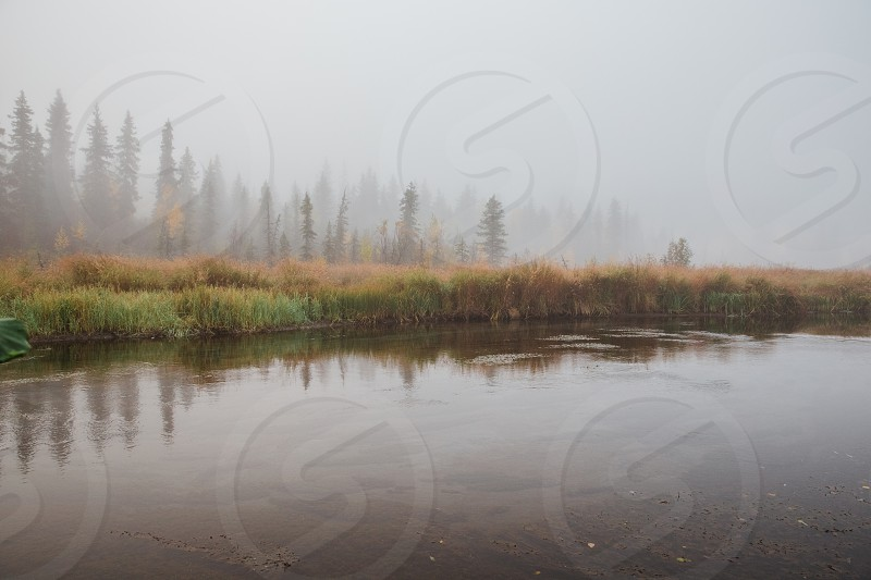 foggy autumn morning in Alaska photo