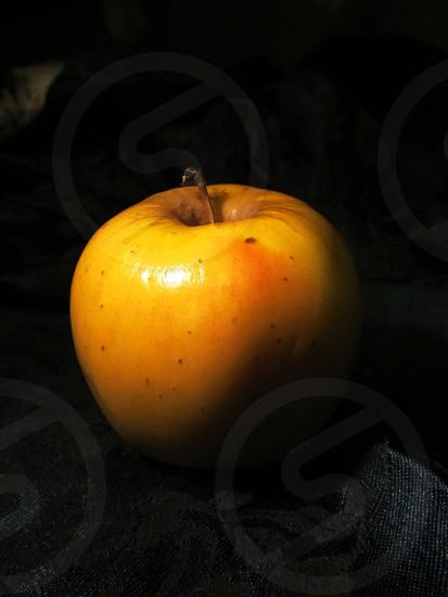 Golden apple in shadow photo