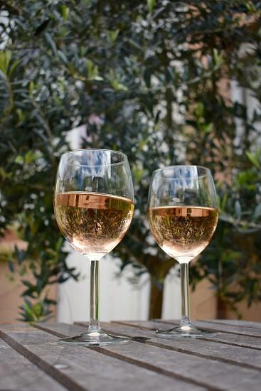 rose wine olive tree rustic patio  photo