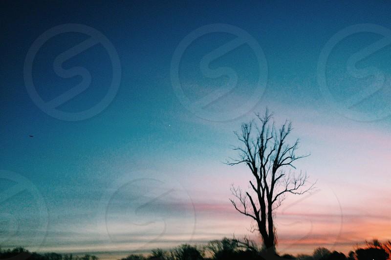 blue sky photo