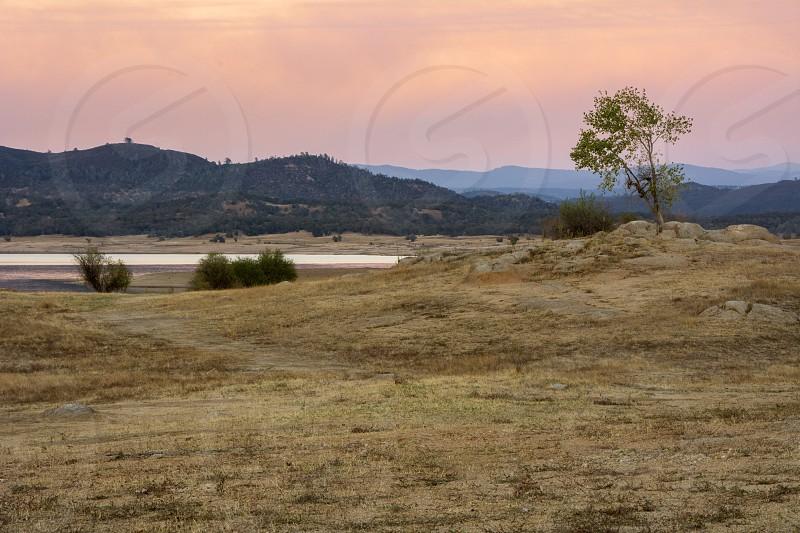 Sunset And Tree At Folsom Lake California photo
