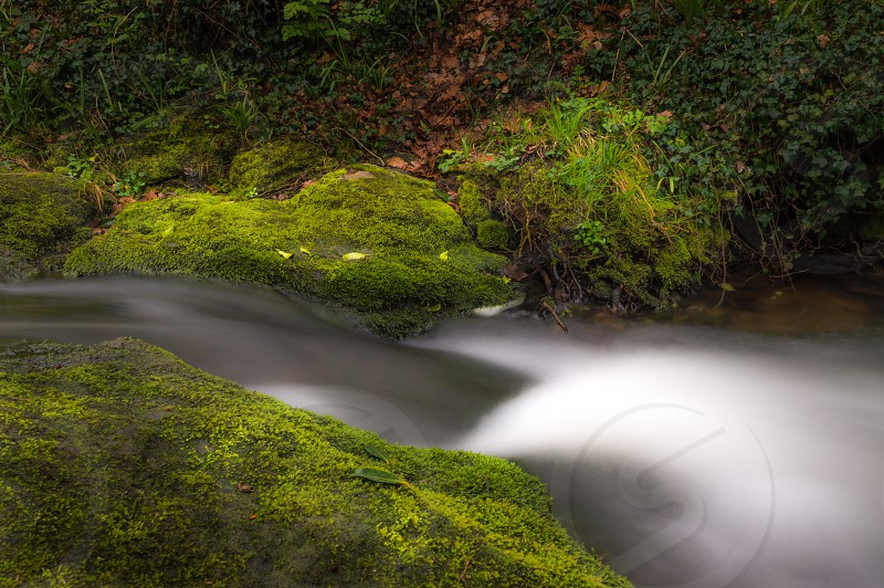 Waterfall water flow stream river moss green  photo