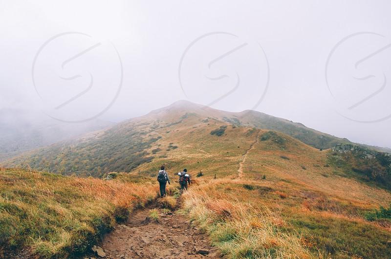 foggy mountain path photo