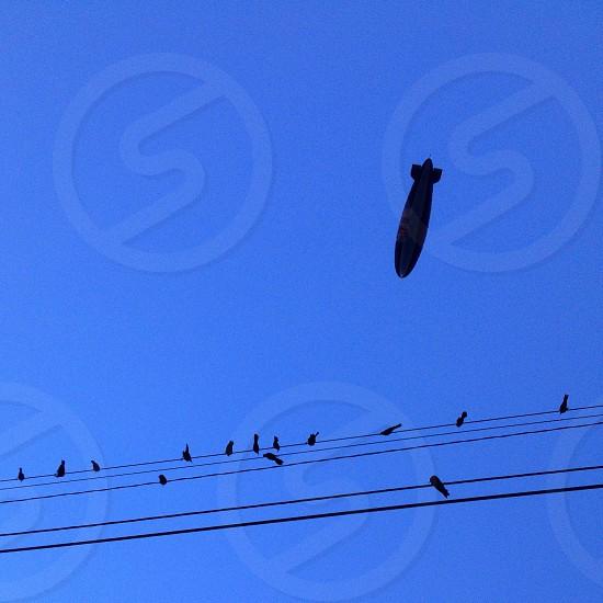 black white air ballon photo