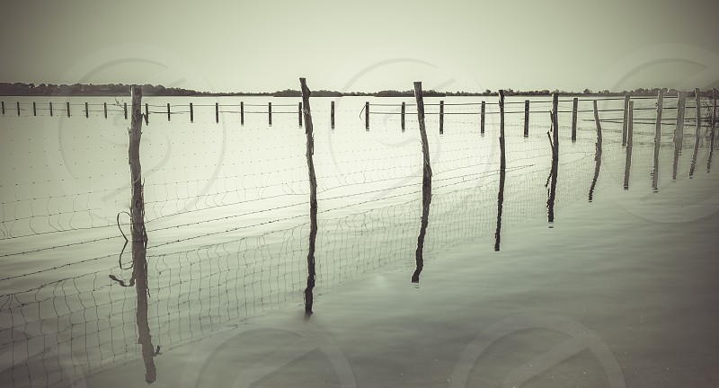 Wooden post and wire fence on a lake in black and white with horizon and sky in background photo
