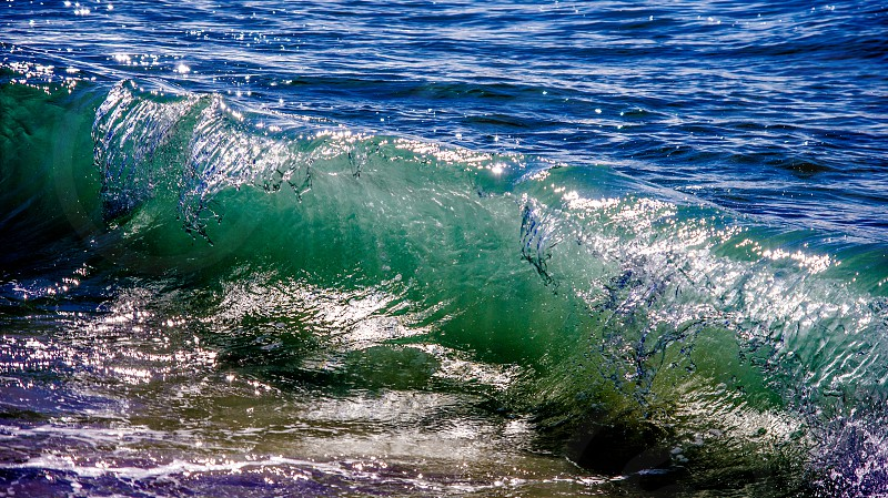 Wave curl photo