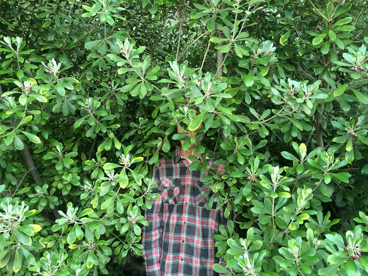 man wearing a black and red checked button up shirt standing in a bush photo