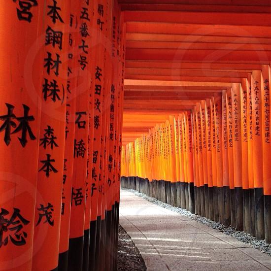 black and orange wooden pillars photo