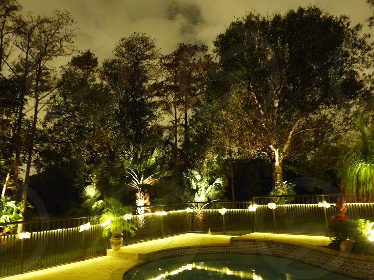 night lighting backyard pool trees photo