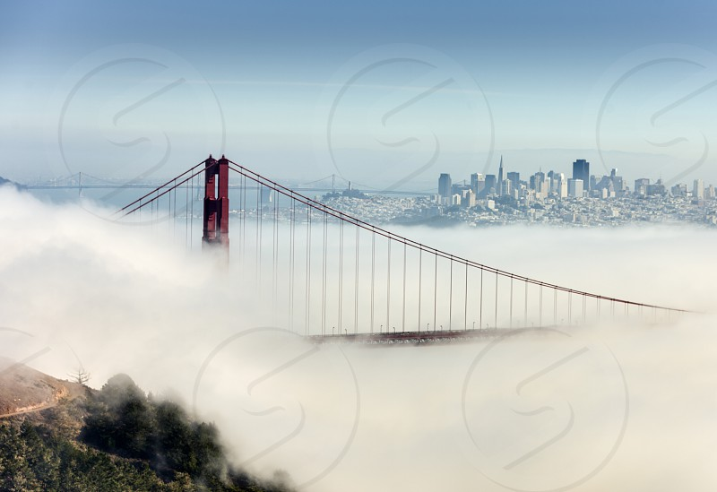 San Francisco Golden gate Bridge with fog  photo