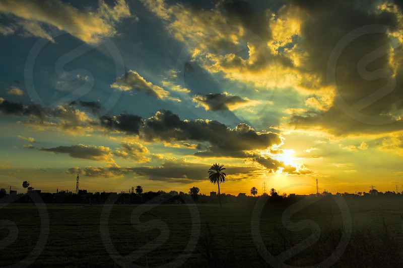 Sunset over the way between Abu Hammad - Zagazig in Delta Egypt photo