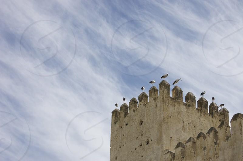 photo of gray concrete castle photo