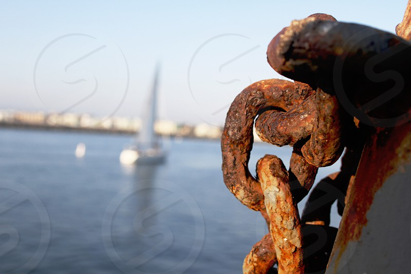 Some of the beauty of the Marina. photo