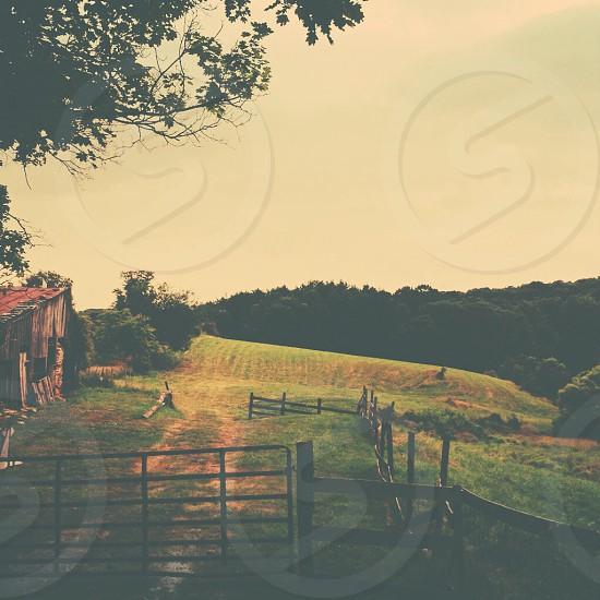 A Farm View landscape  photo