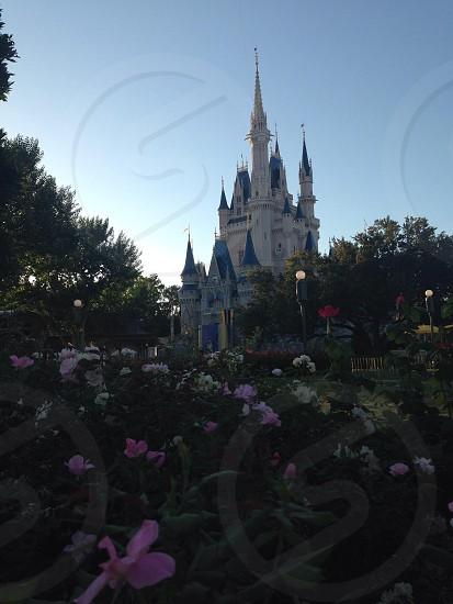 Walt Disney World OrlandoFlorida. photo