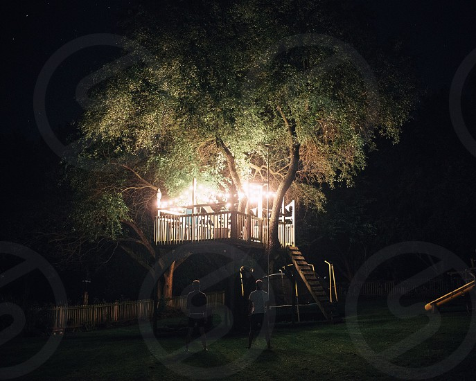 two men at dark looking up at lighted tree house photo