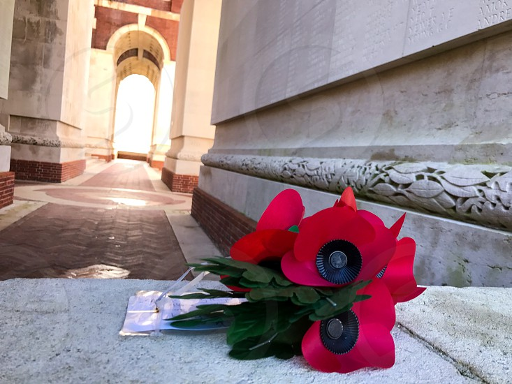 Outdoor day landscape horizontal colour Thiepval France Somme western front Battle site battleground historic historical red Poppies poppy flowers remembrance commemoration monument respect stone WWI WW1 World War One First World War Memorial leaves masonry photo