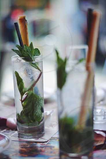shallow focus photography of green leafed plant inside clear drinking glass photo