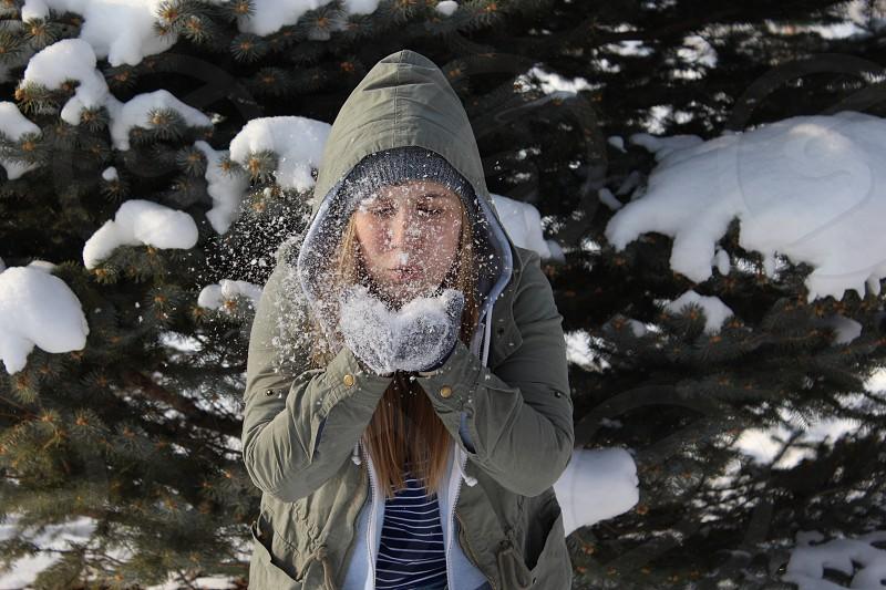 Snow; white; winter; blow pine tree; bright; fun photo