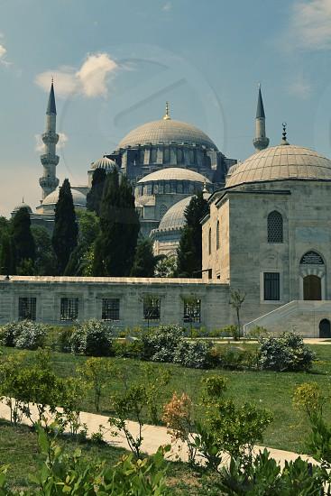 Mosque Garden Istanbul photo
