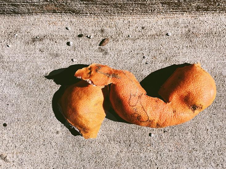 Orange peel orange fruit weird urban cool nature trash litter biodegradable  photo