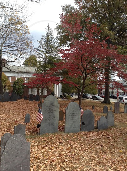 Cemetary in Fall photo