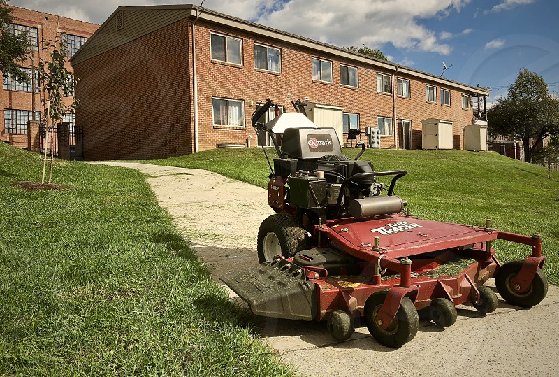 Backyard mowing grass photo