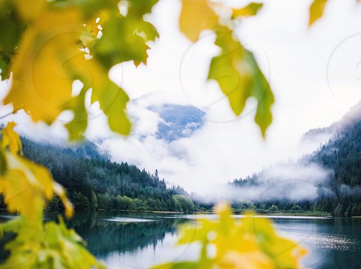 Nature seattle Washington outdoors water photo