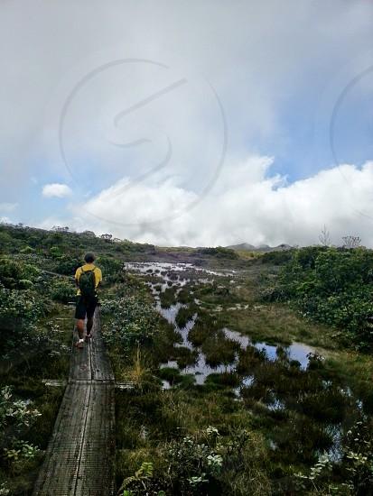 hiking outdoors swamp marsh photo