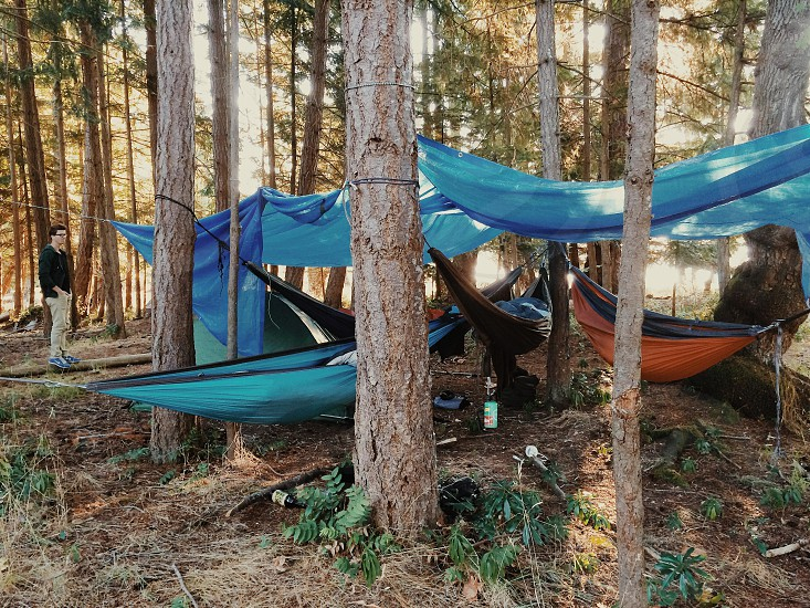 orange blue and black hammocks tied on trees photo