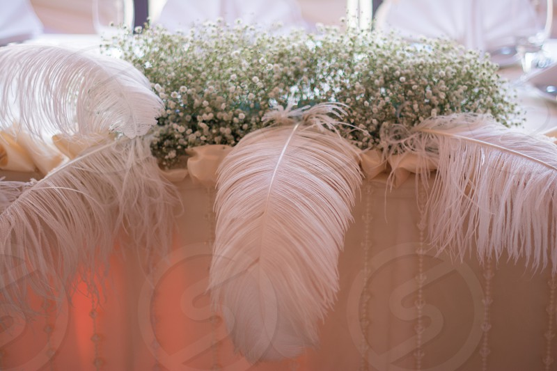 bridegroomweddingwedding tabledecorationflowersfeathersvenue photo
