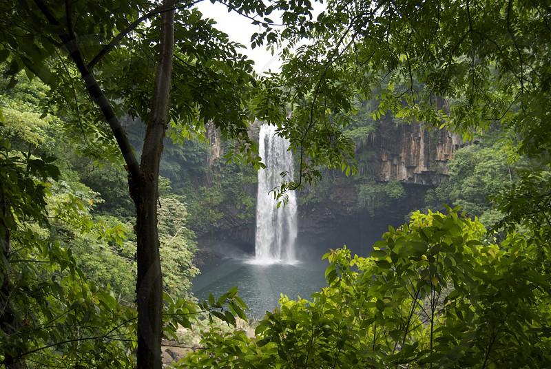Mexico jungle waterfall vacation green trees water photo