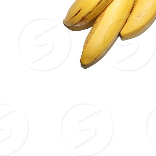 yellow bananas photo