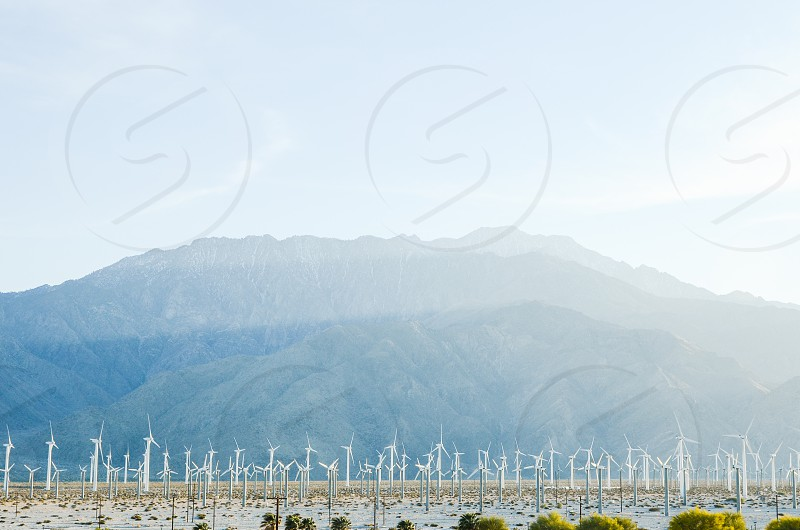 renewable energy electricity windmill mill wind turbine power desert palm springs california earth green photo