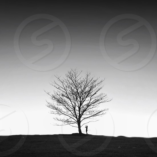 person standing near brown leafless tree photo