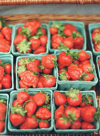 farmer farmers market farm to table fresh organic healthy fruit produce strawberries red photo