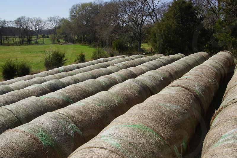 brown hay bales photo