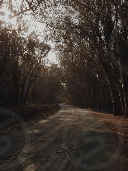 grey road photo