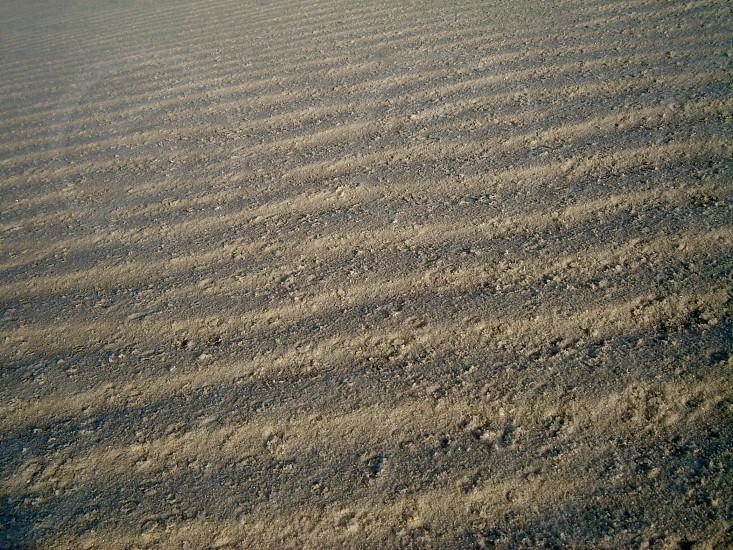 White Sands National Park photo