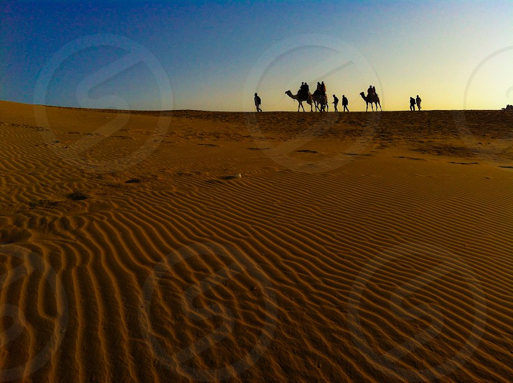 Camel safari in Thar Desert India photo